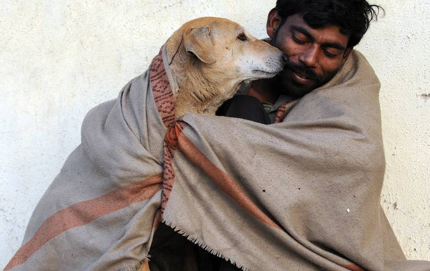 An Indian man shares his shawl with a stray dog in Ahmedabad on a cold morning on January 19, 2012. PHOTO: AFP